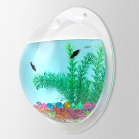 acuario de pared