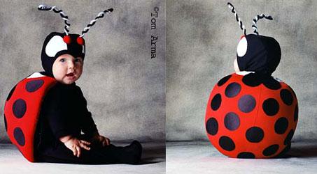 ladybug_ok