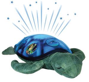 tortuga-mar-planetario