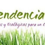 Guía de Juguetes ecológicos y éticos