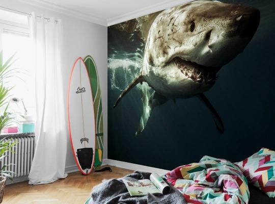 murales para dormitorios imagui