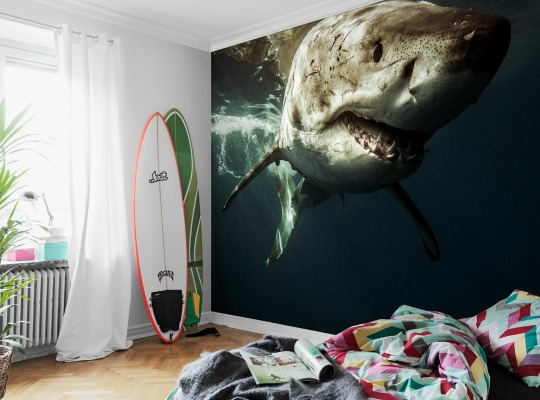 murales para habitaciones juveniles